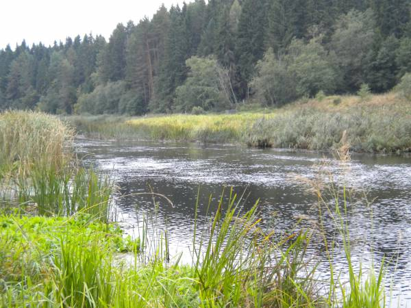 рыбалка на реке тюш